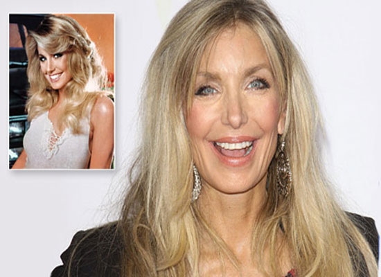 Heather Thomas Plastic Surgery Before and After